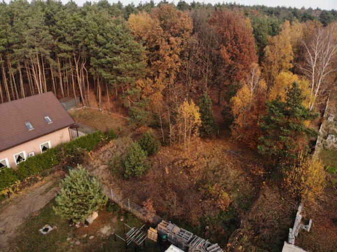 Działka budowlana z prywatnym lasem. Koziegłowy.